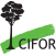 Logo Center for International Forestry Research